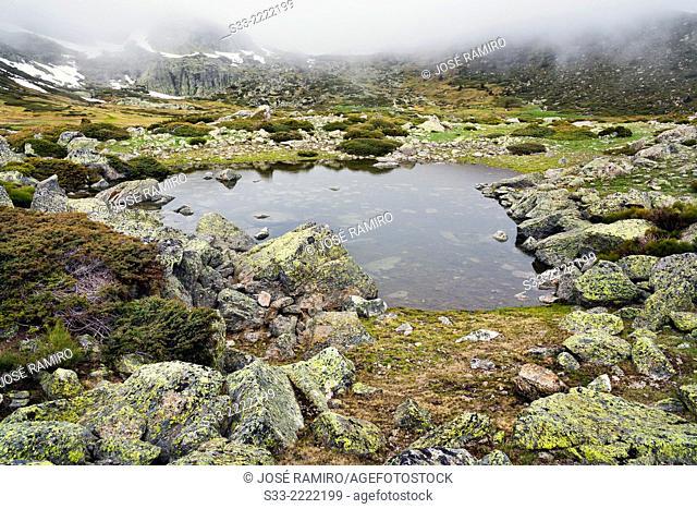 Small lagoon in Peñalara Natural Park. Sierra de Guadarrama. Madrid. Spain
