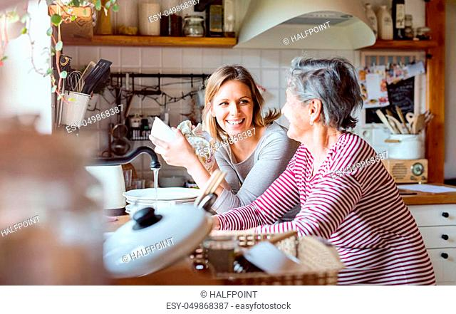 A happy elderly grandmother with an adult granddaughter at home, washing the dishes