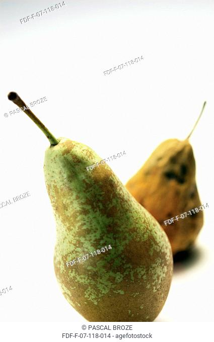 Close-up of two pears