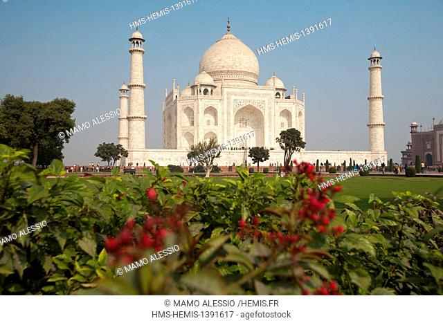 India, Uttar Pradesh State, Agra, Taj Mahal listed as World Heritage by UNESCO