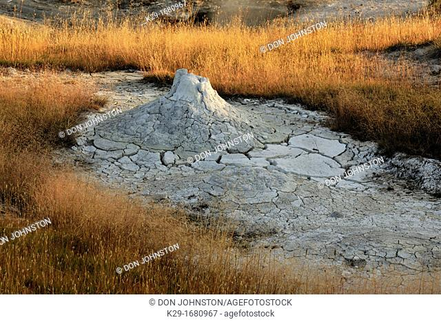 West Thumb Geyser Basin, Yellowstone NP, Wyoming, USA
