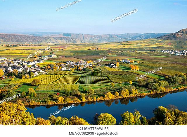 landscape photograph of the Moselle valley close Thörnich at nice weather in autumn