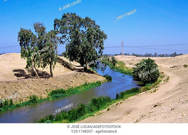 Water channel of the Nilo river, The Faiyum, Egypt