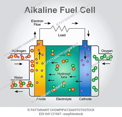 Fine Hydrogen Fuel Cells Diagram Stock Photos And Images Age Fotostock Wiring Digital Resources Remcakbiperorg