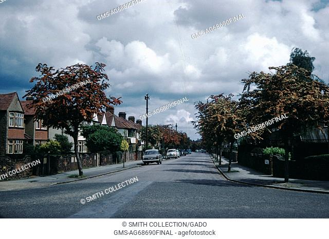 A photograph that provides a view down a street that is lined with trees and homes, the homes appear to be brick faced, some of the homes have been painted...