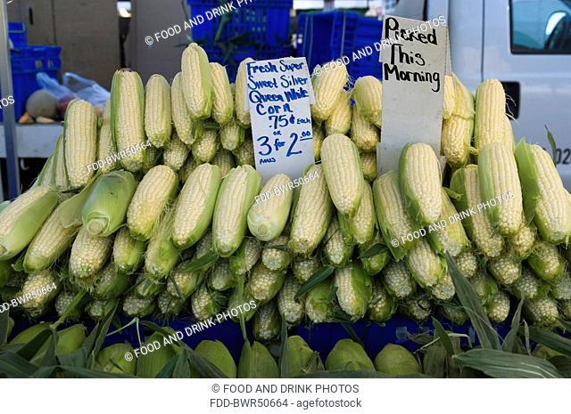 Corn Farmers Los Angeles Farmer Markets