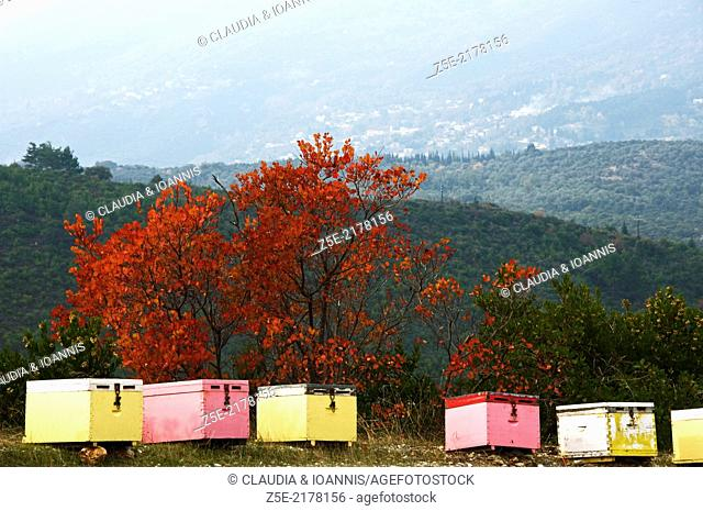 Beehives in autumn landscape (Pelion Peninsula, Thessaly, Greece)