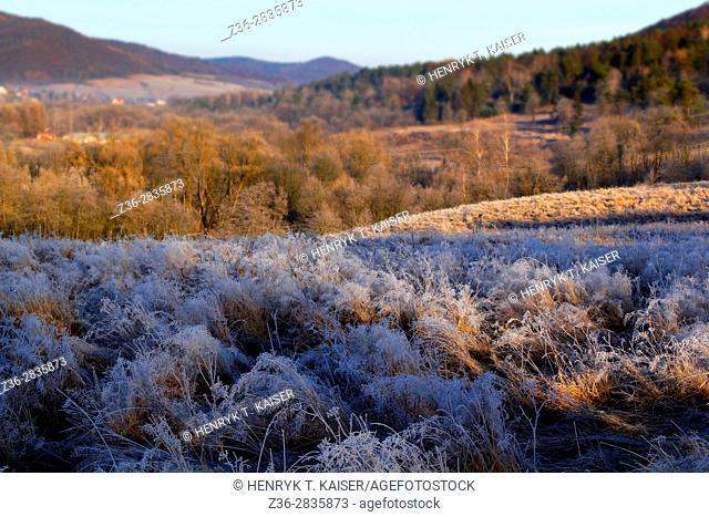 Wintery landscape in Wysowa Zdroj, Poland