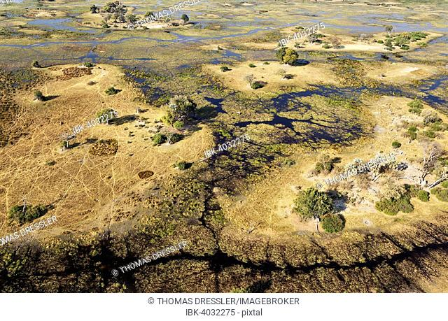 Typical landscape of freshwater marshes with streams, channels and islands, aerial view, Okavango Delta, Botswana
