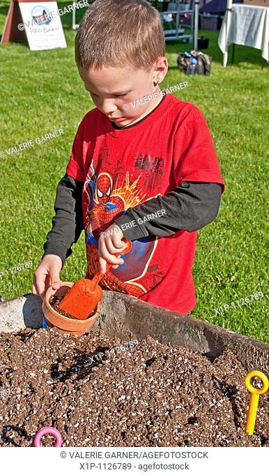 This 5 year old boy is a young gardener to be as he's planting a plan in a clay pot with shovels and a wheelbarrow full of potting soil He's got short hair and...