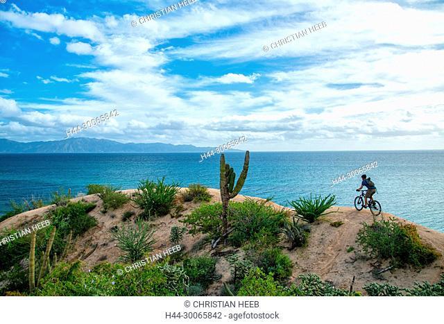 Central America, Mexico, Baja California, Mexican, El Sargento, La Ventana, Desert , Mountain Biking, MR 0630