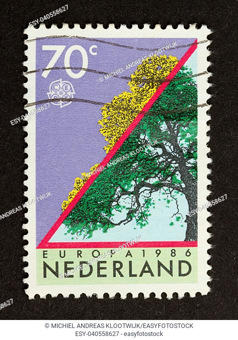 HOLLAND - CIRCA 1980: Stamp printed in the Netherlands shows a tree in the summer and autumn, circa 1980