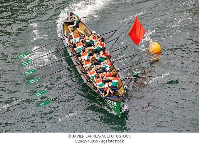 Trainera, Trawler regatta, Urumea river, Donostia, San Sebastian, Gipuzkoa, Basque Country, Spain, Europe