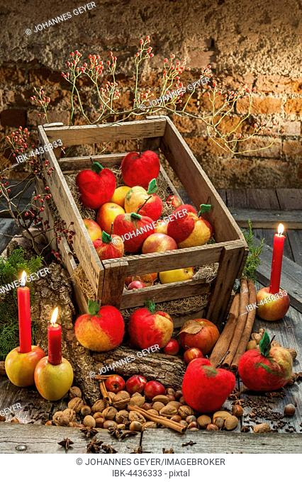 Christmas decoration, hand felted apples in wooden box, lit red candles, bark, spices and rose hips on wooden table in front of brick wall