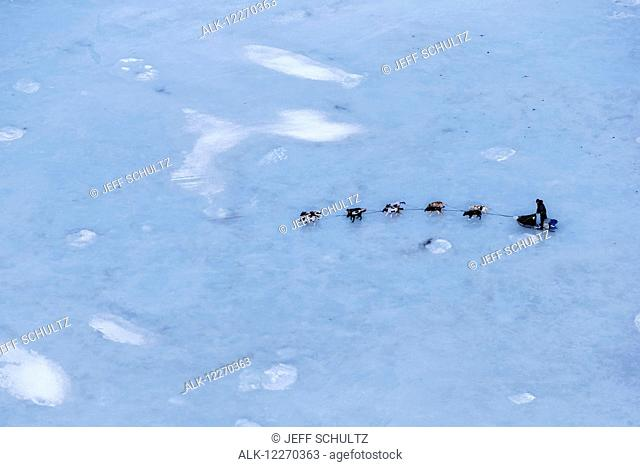 Aerial of Ray Redington Jr. on the glare sea ice of Golovin Bay nearing Golovin during the Iditarod Sled Dog Race 2014