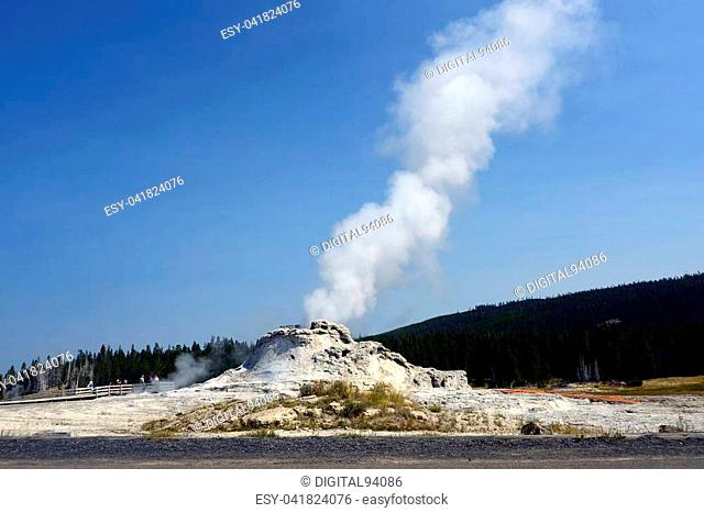 The beautiful Castle Geyser in Yellowstone National Park, Wyoming
