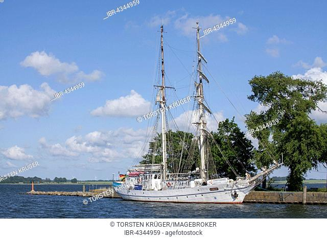 Sailboat Greif in Wieck harbor, Greifswald, Mecklenburg-Western Pomerania, Germany