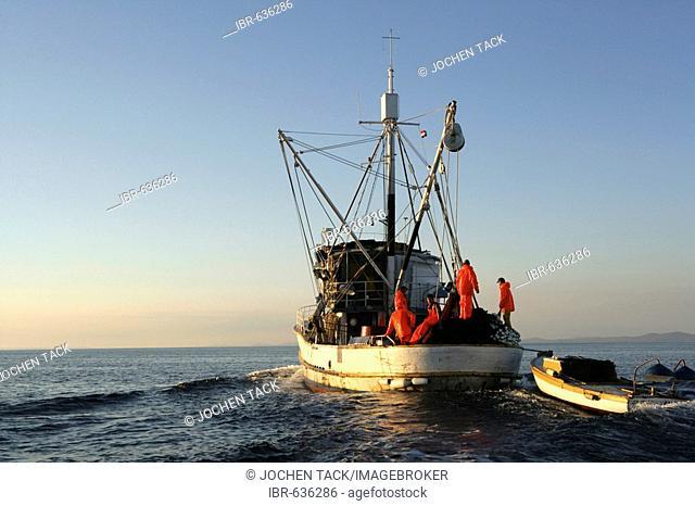 Sardine fishing boat Jastreb, based in Kali on Ugljan Island, at a fishing site off of Pag Island in the Adriatic, Croatia, Europe