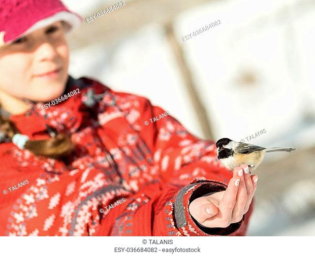 Girl hand-feeding a black-caped chickadee