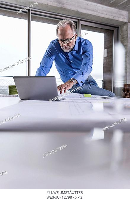 Mature businessman using laptop in conference room in office