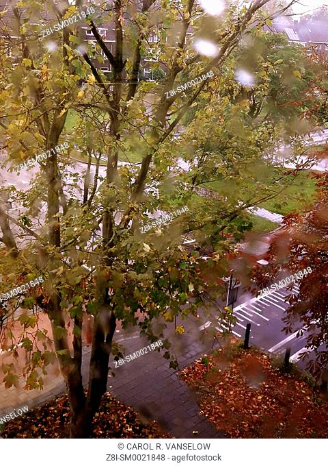 Looking out of third floor window on a rainy autumn day in Maastricht