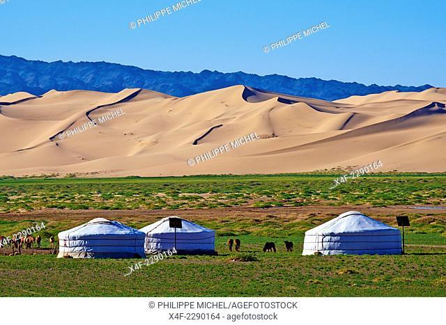 Mongolia, Omnogov province, National Park of Gobi, Gobi desert, Khongoryn Els dunes, nomad camp