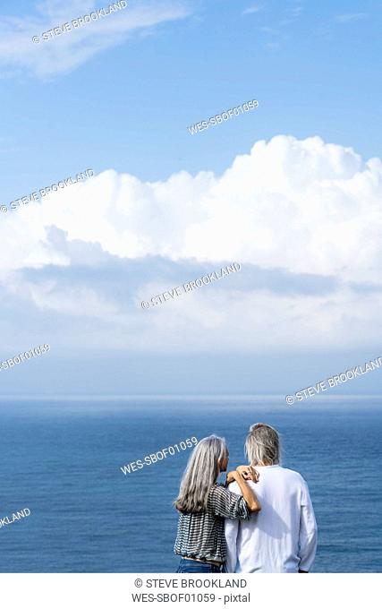 Senior couple looking at the ocean, rear view