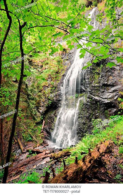 Ukraine, Zakarpattia, Rakhiv district, Carpathians, Majestic cascade waterfall in forest