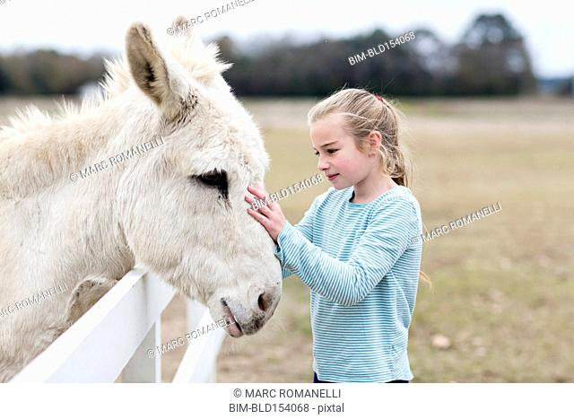 Caucasian girl petting donkey in field