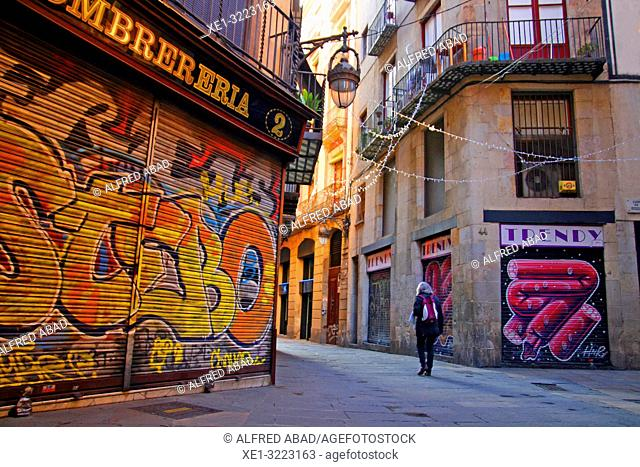 street and graffiti in the blinds, gothic quarter, Barcelona, Catalonia, Spain
