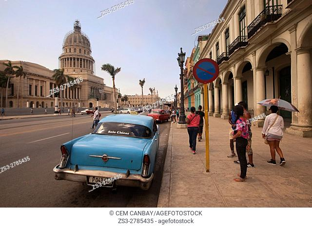 Street scene with old American cars used as taxis in front of the Capitolio building in Central Havana, La Habana, Cuba, West Indies, Central America
