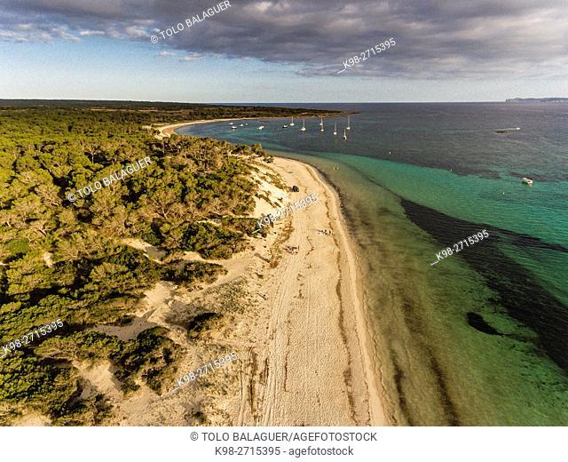 Carbó beach,Ses Salines, , protected natural area, Majorca, Balearic Islands, Spain