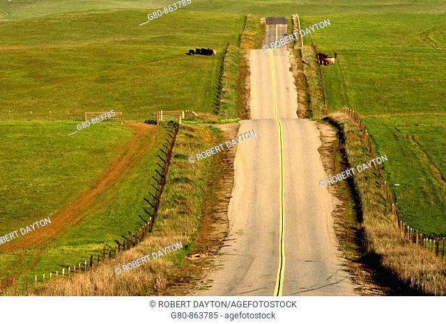 A roller coaster of a road in the Central Valley of California
