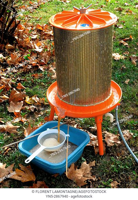 Juice extractor for making natural and organic apple juice - Step 3: pressure and extraction for apple juice