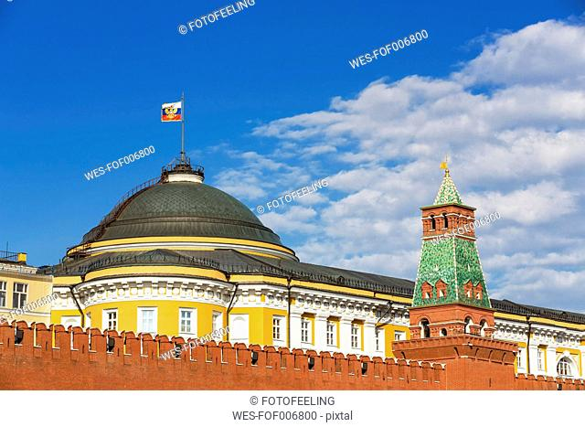 Russia, Moscow, Red Square with Senate Palace and Tower and Kremlin wall
