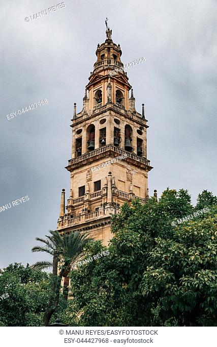 Views of the mosque tower in cordoba, spain, from orange tree courtyard