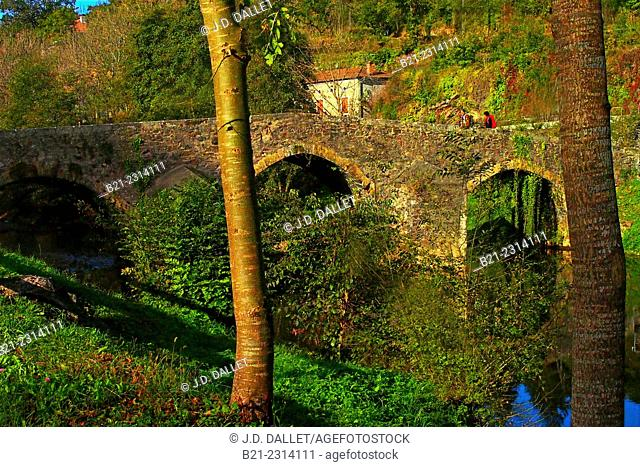 Middle Age bridge (11th century) on the Célé river at Bagnac, Lot, Midi-Pyrenees, France