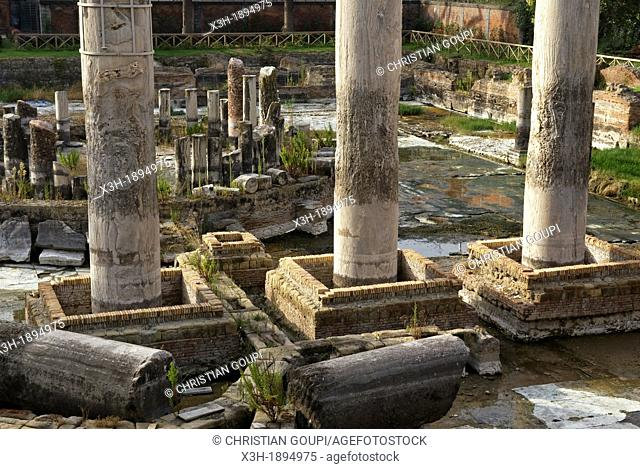 The ancient Macellum of Pozzuoli was a market building, erroneously identified as a Serapeum when a statue of Serapis was discovered, Pozzuali, around Naples