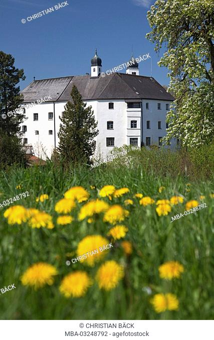 Castle Amerang in the spring, Chiemgau, Upper Bavaria, Bavaria, South Germany, Germany