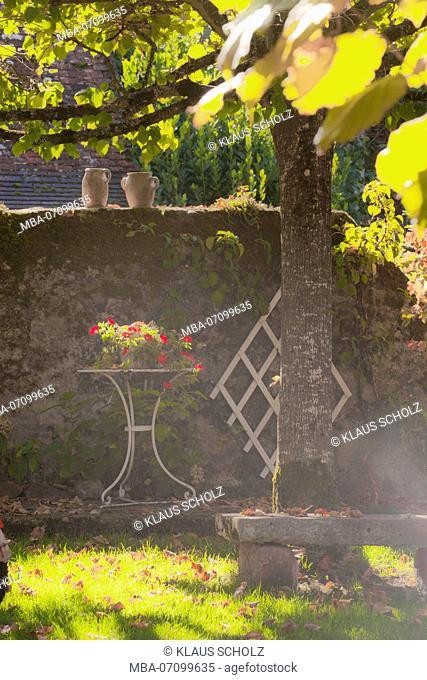 France, idyllic garden in the back light
