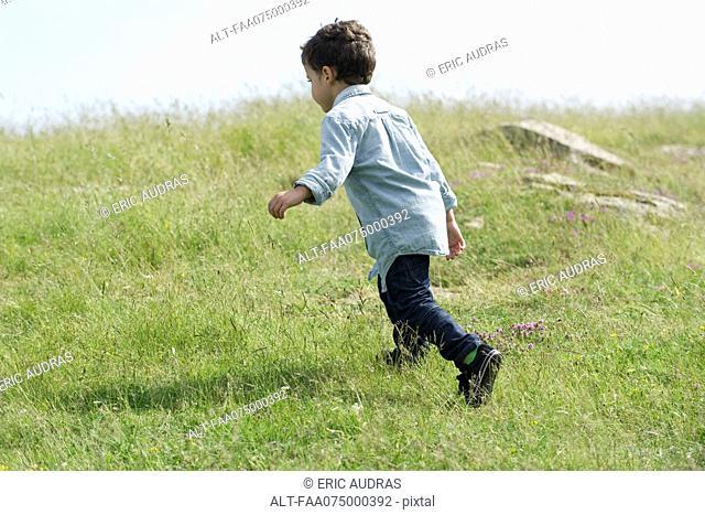 Little boy running in meadow, rear view