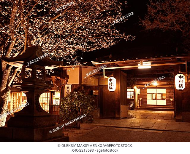Japanese restaurant entrance with cherry blossom at night in Gion, Kyoto, Japan 2014