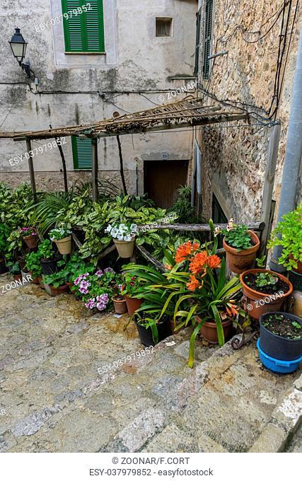 rustic, flowerpots street in the tourist island of Mallorca, Valdemosa city in Spain