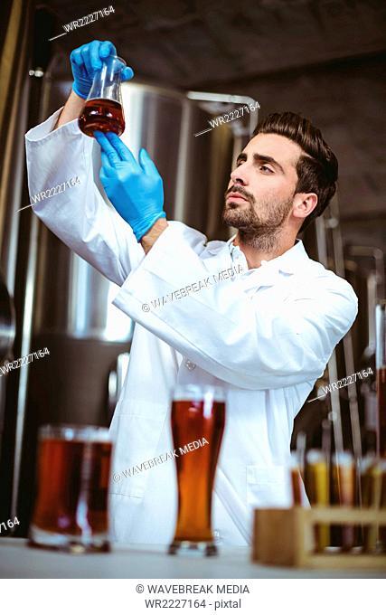 Focused brewer checking beaker of beer