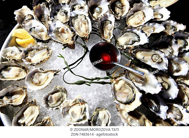 Opened oysters on ice with red souse