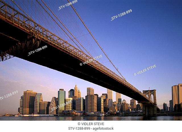 America, Bridge, City, Holiday, Landmark, New york, New york city, Skyline, Skyscrapers, Sunrise, Tourism, Travel, United states