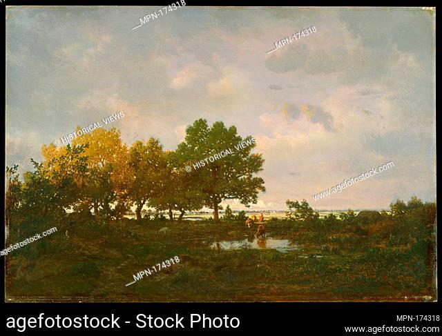 The Pond (La Mare). Artist: Théodore Rousseau (French, Paris 1812-1867 Barbizon); Date: 1855; Medium: Oil on wood; Dimensions: 13 1/2 x 20 3/8 in. (34