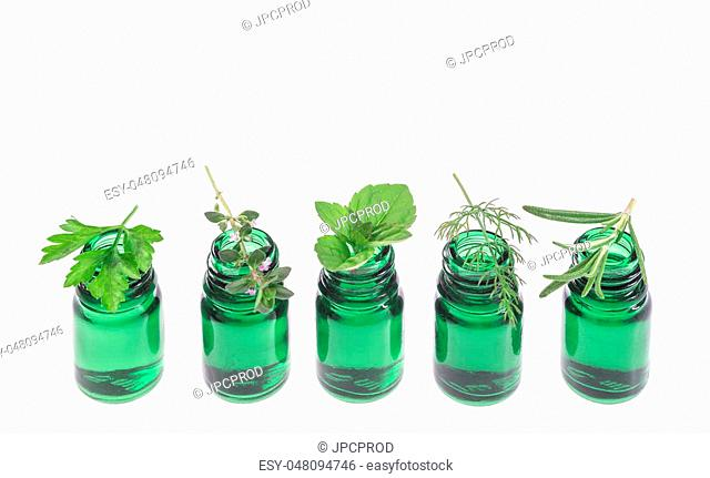 Bottle of essential oil with herb fresh plants and flowers, white background