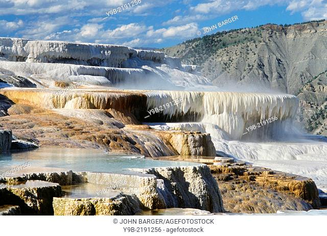 Travertine deposits form terraces at Canary Springs, Mammoth Hot Springs Area, Yellowstone National Park, Wyoming, USA