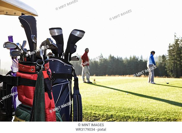 A closeup of golf clubs on a cart with golfers on the green in the background